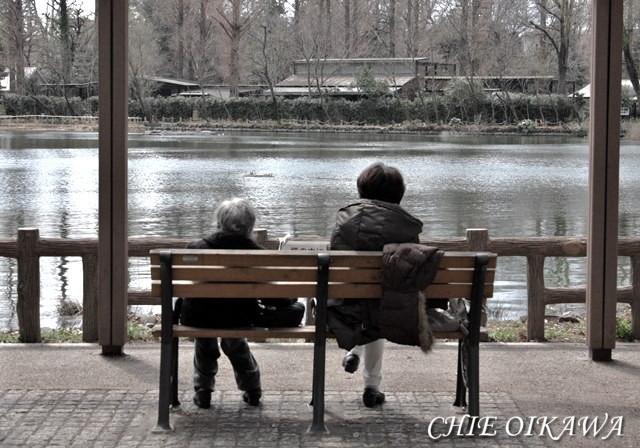 【人間観察日記・0】人間という愛おしき生き物の話